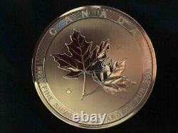 2017 10 oz. $50 Canada Maple SILVER. 9999 purity coin
