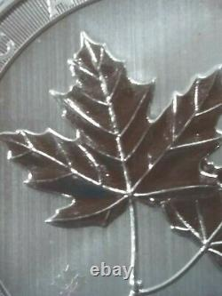 2021 10 oz Canadian Silver Magnificent Maple Leaf Coin withfactory capsule